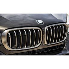 Решетка радиатора Pure Extravagance для BMW X6 F16