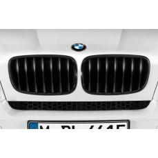 Решетка радиатора BMW X5 E70/X6 E71 (черная)